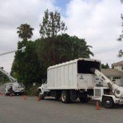 Truck_pic-23...3682B-4231-B441-EFA5A83A6AC9
